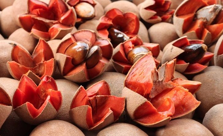 4 sabores de Paletas Mexicanas únicas